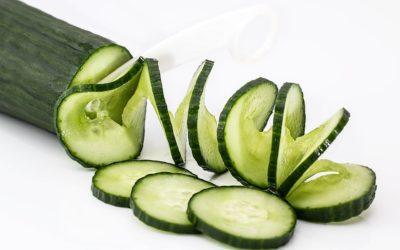 Hoe ben jij de komkommertijd doorgekomen?